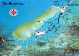 Woodhouse Reef, Straits of Tiran, Sharm el Sheikh