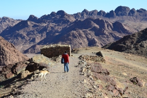 hiker on mt sinai